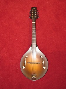 Used Collings MT Mandolin